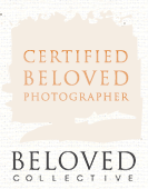 beloved collective photographer