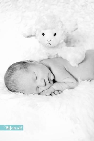 newborn-Mees-ZW-120-Kopie