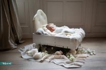 newborn-Woud-Dexx-1-Kopie